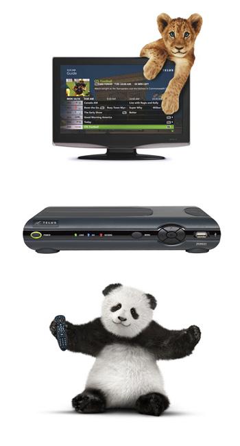 Telus-Tv-PIC