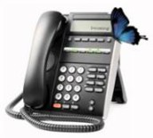 VoIP Demo